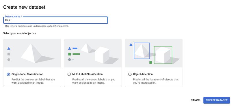 Create single-label classification dataset