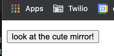 "HTML button that says ""look at the cute mirror!"""