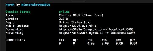 Tela de exemplo do Ngrok em funcionamento e com o link público.
