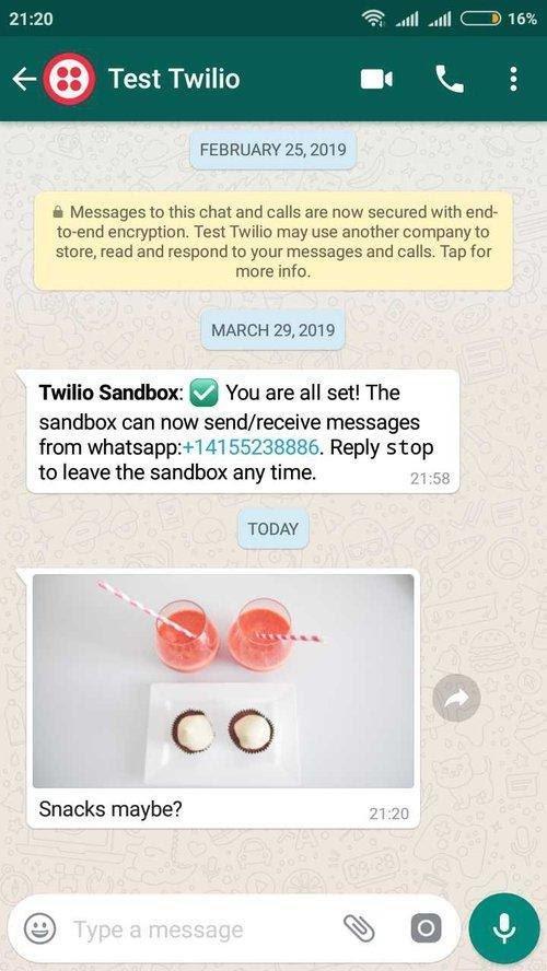 Tela do WhatsApp com a demonstração em funcionamento e uma imagem enviada de exemplo