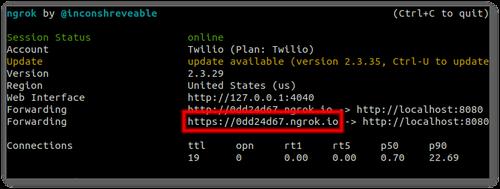 Screenshot of ngrok output