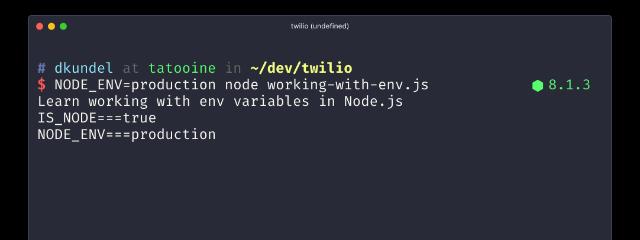 Environment Variables in Node.js