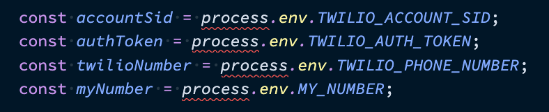 A screen shot of the code we wrote earlier assigning variables from process.env. process is underlined in red.