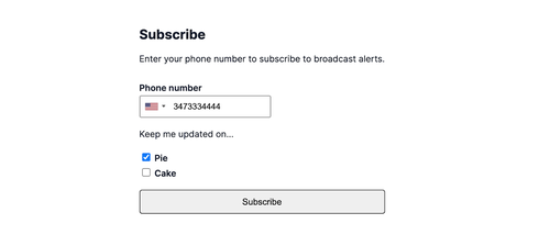 subscribe screen on the application