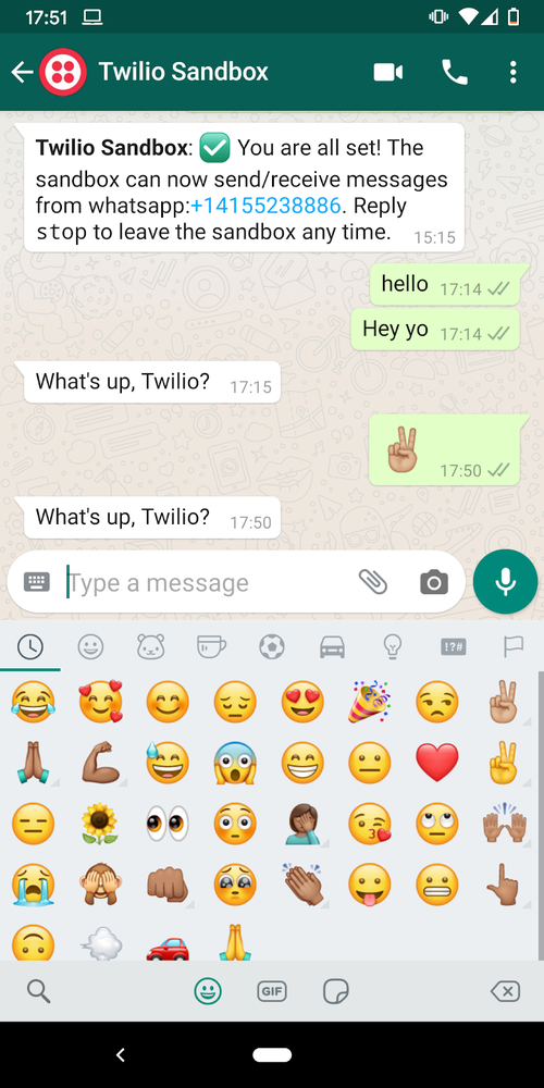 whatsapp bot demo