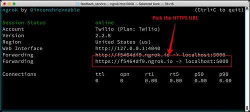 Das ngrok Fenster zeigt zwei URLs, die du verwenden kannst. Wähle die Option mit HTTPS.