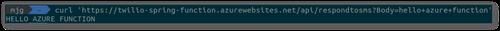 Screenshot of the curl command against Azure's public URL.
