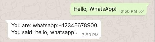 whatsapp demo