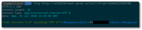 Screenshot of an HTTP call to the ngrok URL showing TwiML in the response
