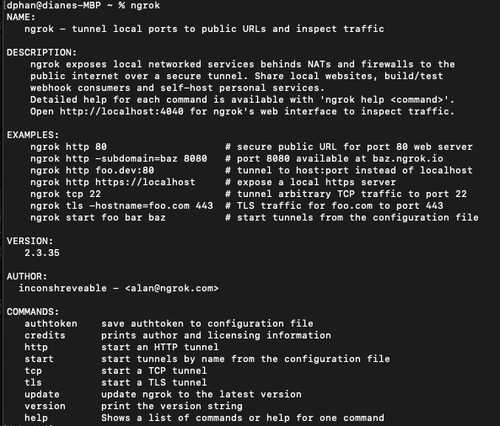 example of ngrok output on terminal