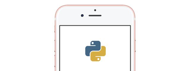 So sendest du eine SMS-Nachricht mit Python