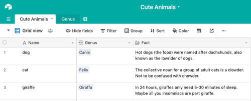 """Screenshot of an Airtable base named """"Cute Animals"""" that has 2 tables: Cute Animals, and Genus."""