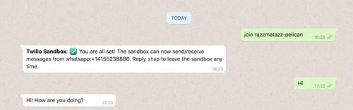 Pantalla de WhatsApp que muestra el mensaje de prueba