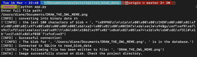screenshot of example print statement output to see on the terminal about blob file data