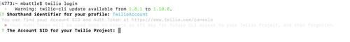 Twilio CLI login
