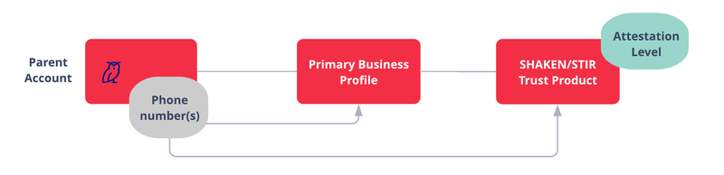SHAKEN STIR - Direct Customer no Subaccounts: Create Primary Business Profile under Parent Account, Add Phone numbers from Parent Account to Business Profile. Create Trust Product, add phone numbers from Business Profile.