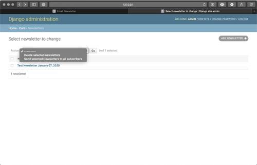 Send newsletter admin action screenshot