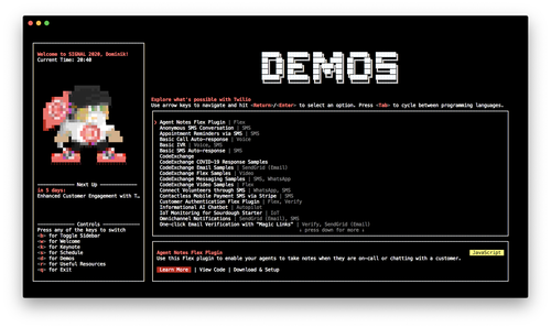 terminal screenshot of SIGNAL Developer Mode in the demos section