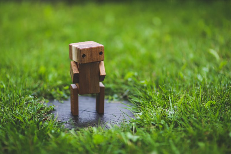 Robot standing on a paver in the grass