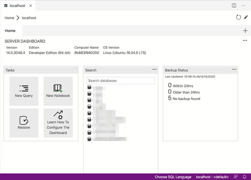 screenshot of connected databases in Azure Data Studio