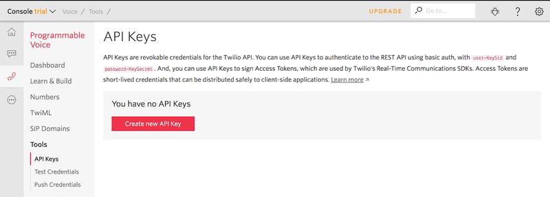 Twilio API keys