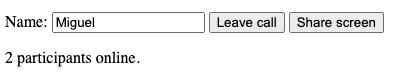 Share screen button