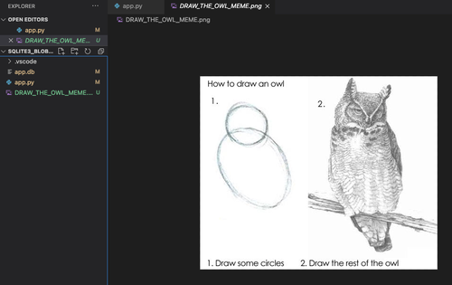 """screenshot of the project directory with the """"draw an owl"""" meme image"""