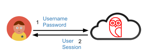 User session diagram