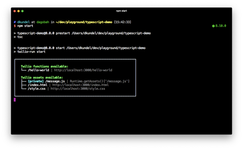 "screenshot of terminal showing that tsc was executed and the output of ""twilio-run start"""