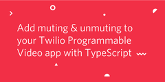 mutingtypescript.png