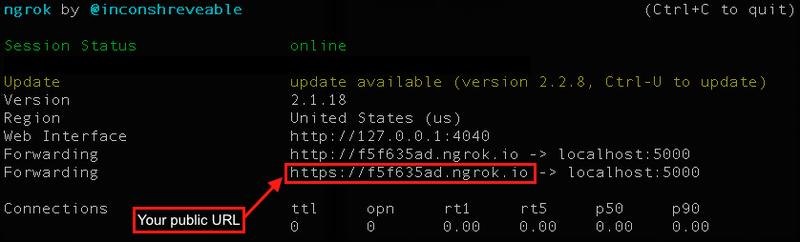 Ngrok server terminal output