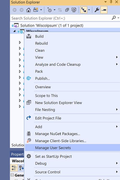 Visual Studio project node context menu screenshot