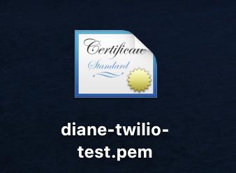 diane-twilio-test.pem icon file