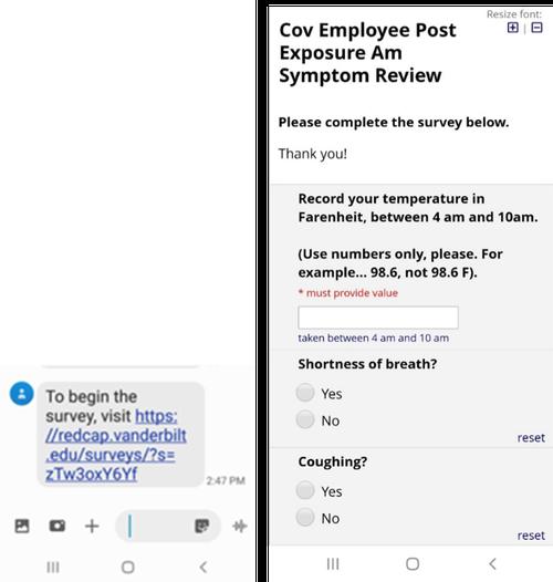 REDCap Survey