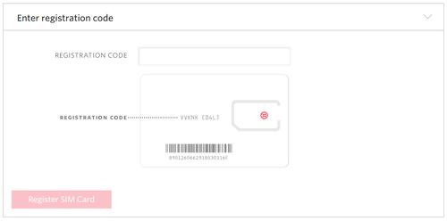 registering-sims-enter-reg-code.png