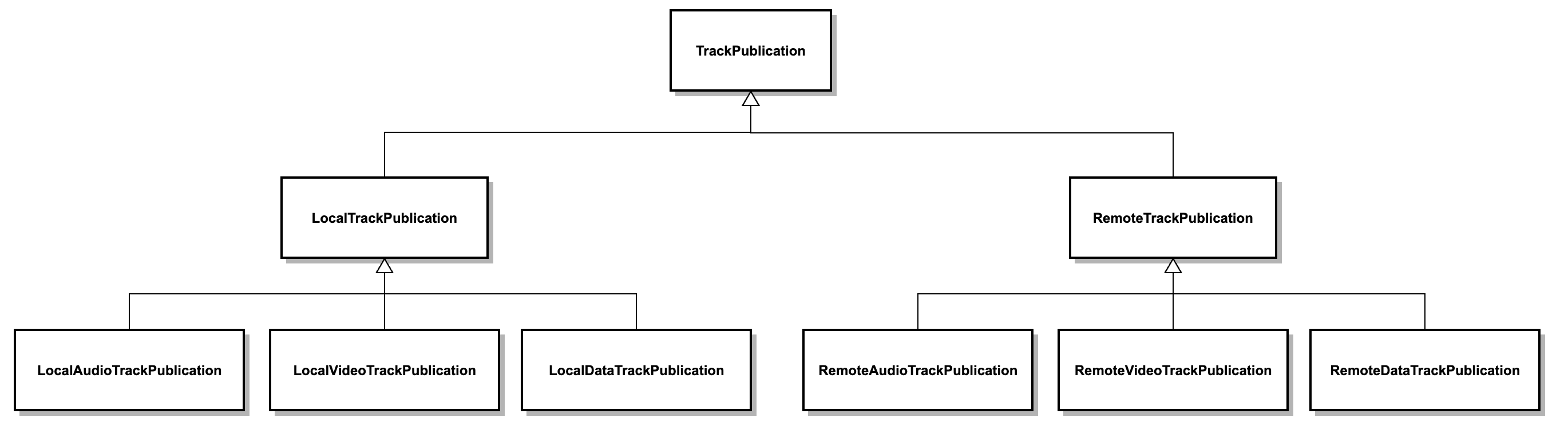 Programmable Video SDKs TrackPublication Types