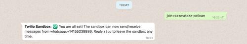 Tela do WhatsApp com a mensagem de vínculo da Sandbox e resposta da confirmação de ativação.