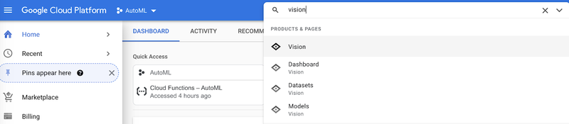 """search """"vision"""" in Google Cloud"""